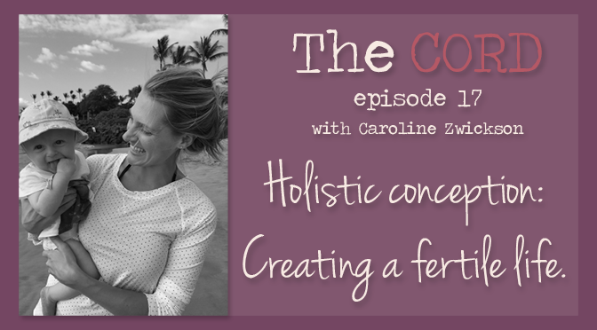 Holistic conception: Creating a fertile life.