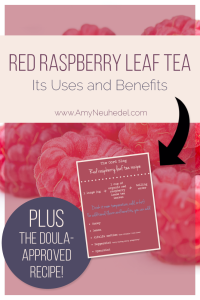 There are tons of benefits of red raspberry leaf tea. It's great for regulating periods, heavy periods, painful periods and irregular periods. As a uterine tonic it's good to drink before you get pregnant, especially if you're trying to conceive, as it's full of yummy vitamins and has really awesome benefits for your overall female health, which puts you in a good place for conception. Even if you don't want to conceive, the benefits from this uterine tonic are still good for you.